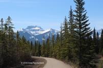 """Sundance Canyon """"hike"""" -- Banff, Alberta"""