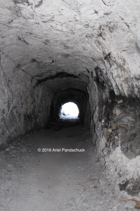 Cold War Bunker (near Canmore)