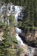 Tangled Falls