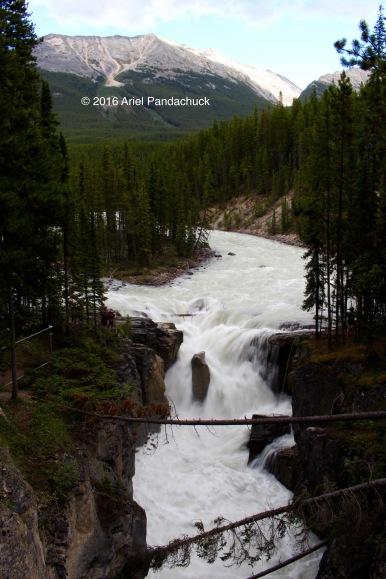 Sunwapta Falls, Alberta