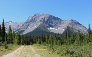 The first part of the hike is slightly boring and looks like this, but it's worth it!