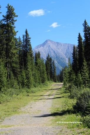 Hike at Karst Springs