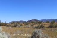 Osoyoos Desert Centre