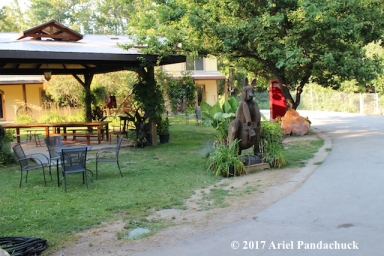 Near the entrance-Kangaroo Creek Farm