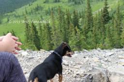 At the ridge where you either turn around or 'scramble'