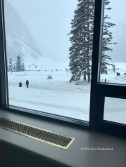 Our snowy view