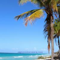 CUBA! {PART ONE - THE RESORT}